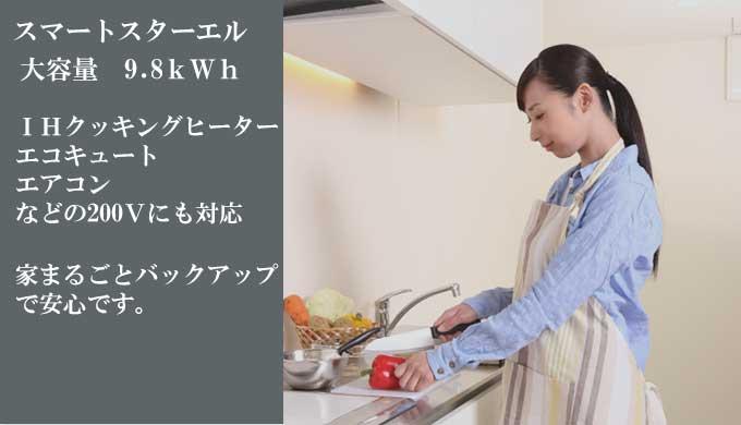 スマートスターエル/SmartStar L
